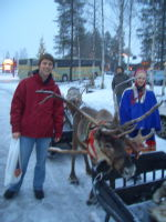 [20] Reindeer outside Santa's house at Rovaniemi