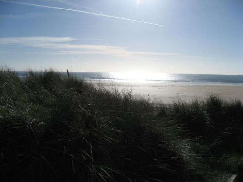 Freshwater Beach - Pembroke