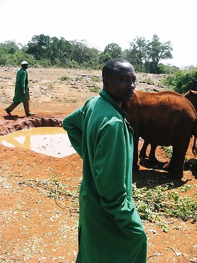 Elephant Orphanage Keeper