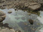 Rocks and a pool = rock pool