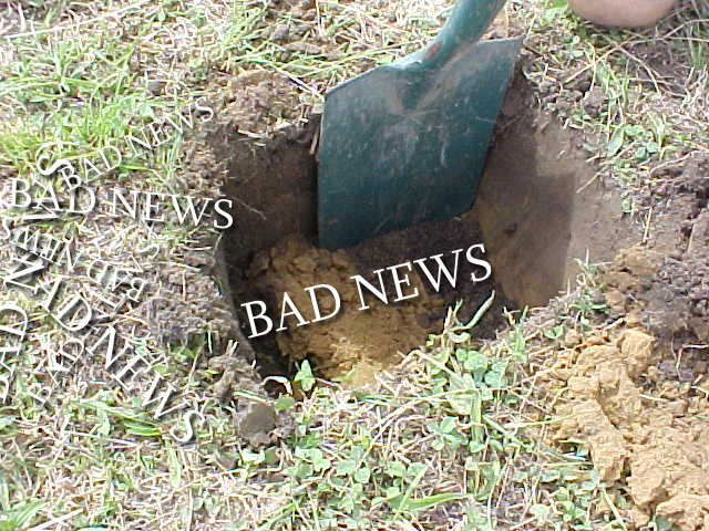 Burying Bad News