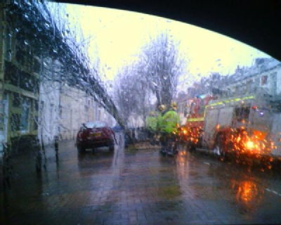 A dodgy photo of a fallen tree in Cardiff