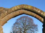 Arch over tree