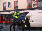 Dublin police horse (Temple Bar)