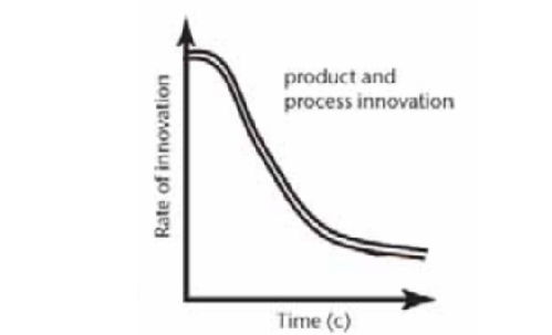 Picture 1: product/process life cycle.