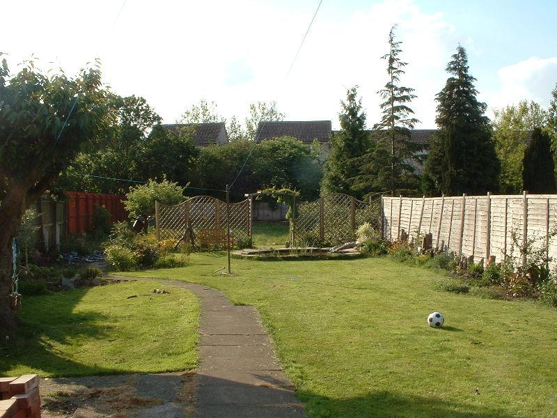 My garden colin 39 s blog for My gardener landscaping