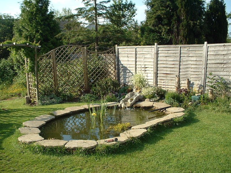 My garden colin 39 s blog for Large outdoor fish ponds