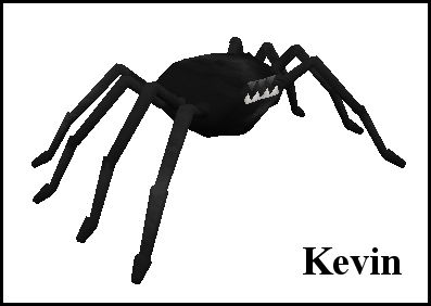 Kevin - Hell spider