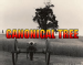 cannonical tree
