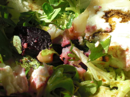 roasted beetroot and goats cheese salad