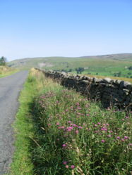 Scenery from the dales