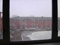 Snow #1