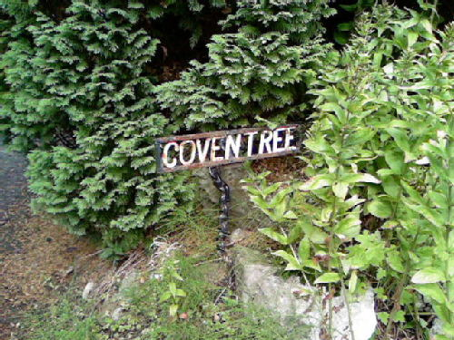 Coventree