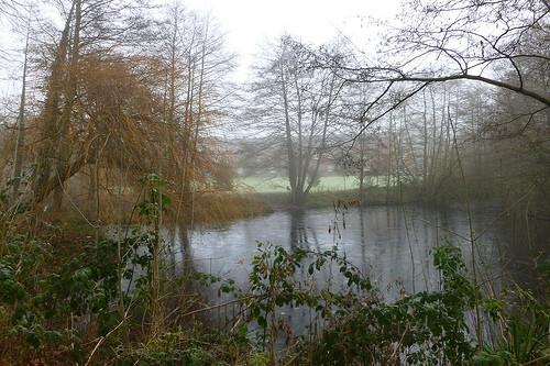 A misty morning near Claycroft, Warwick campus.