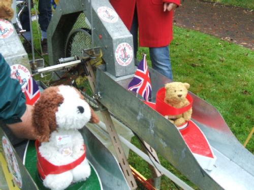 Boat a Bear