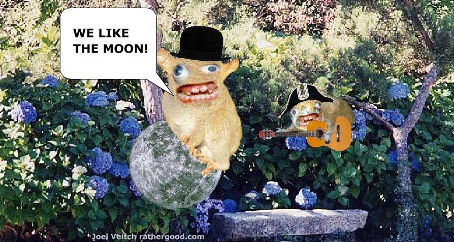 we_like_the_moon.jpg