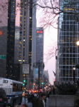 Manhattan Evening