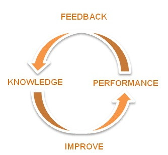 knowledge-performance cycle