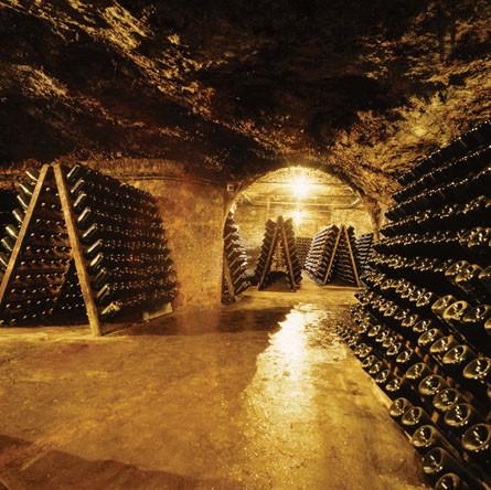 Bezoek aan de cavas van freixenet 20 06 07 scribbles of a dutch polishman - Cavas de vino para casa ...