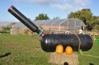 New House Farm Pumpkin Cannon