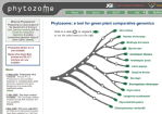 phytozome