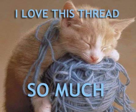 kitty thread
