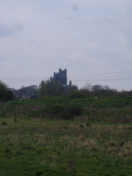 Ely Cathedral From A Distance