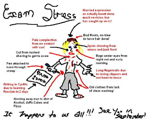 ways to overcome stress essay People who searched for dealing with stress during college found the links, articles,  so it's important to develop healthy ways to deal with it.
