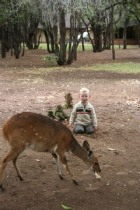 Lawrence and a bushbuck