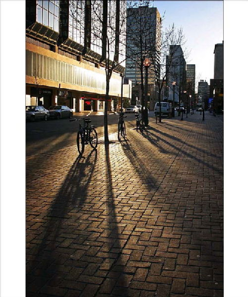 Toronto, Rabia's Blog