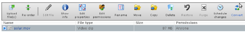 """Click """"Convert"""" on the files toolbar after selecting your file"""