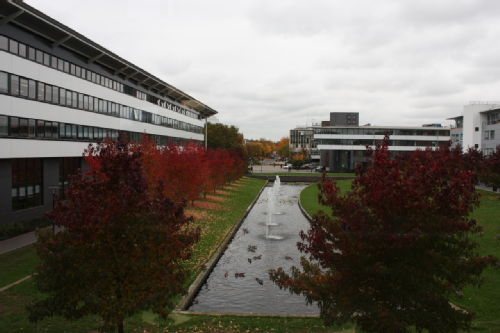 IIPSI Autumnal View