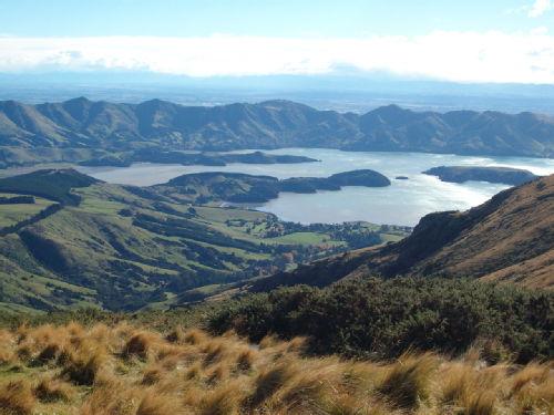 View from Mt Herbert