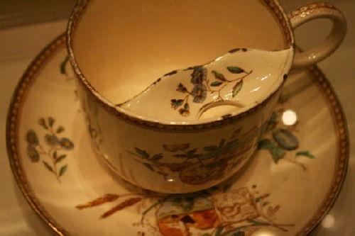 tash cup