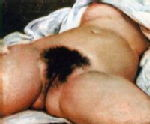 Courbet -The Origin of the World